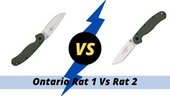 Ontario Rat 1 Vs Rat 2